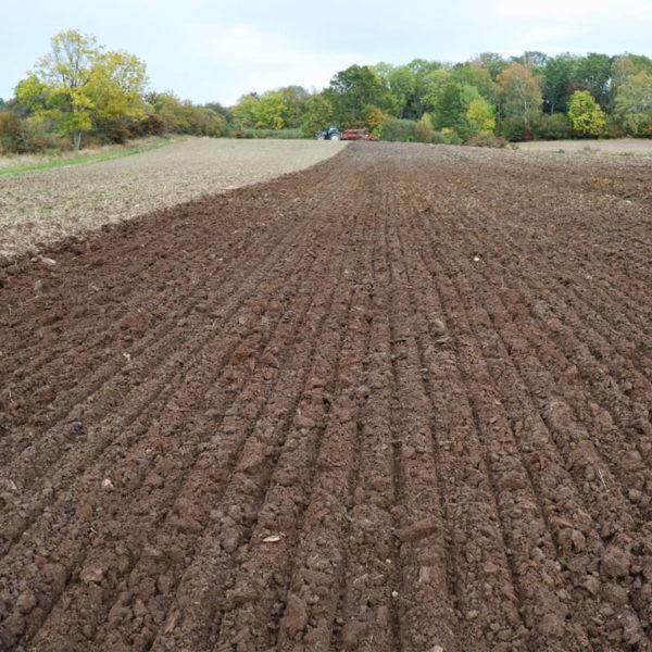 Kverneland-farm-sale-da-forgie-northern-ireland-soil-mounted-reversible-plough-2300-s-6