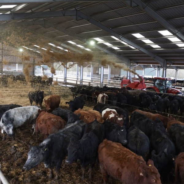 Kverneland-farm-machinery-sales-da-forgie-northern-ireland-feeding-bale-choppers-feeders-kverneland-863-864-3